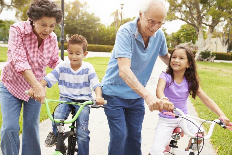 Morföräldrar som undervisar barnbarn att rida cyklar parkerar in royaltyfri bild