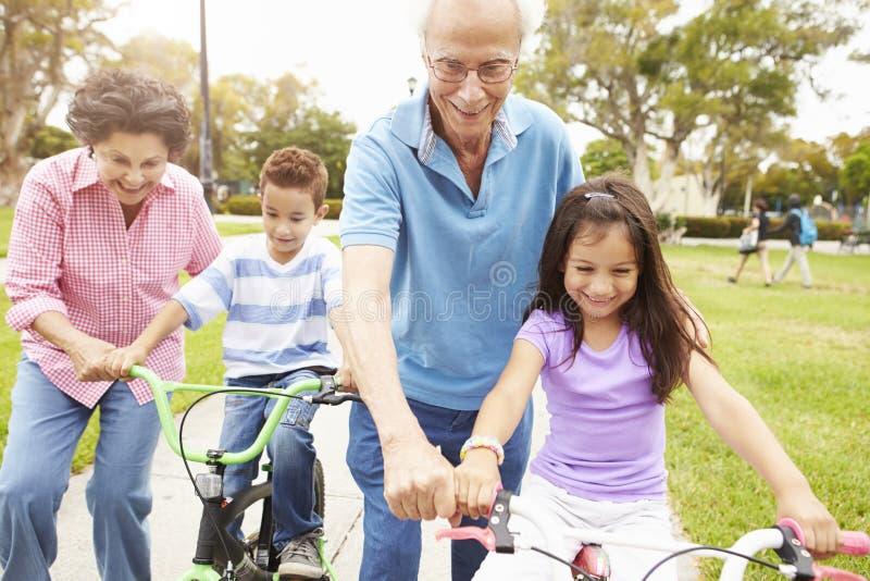 Morföräldrar som undervisar barnbarn att rida cyklar parkerar in royaltyfri foto