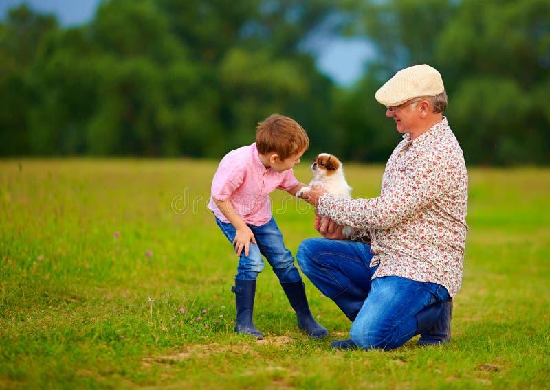 Morfar som framlägger den lilla valpen till sonsonen som spelar med hunden royaltyfria foton