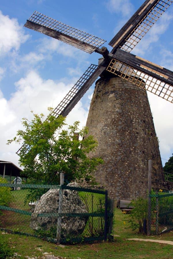 Morgan Lewis Mill stock foto's