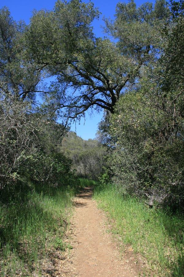 Morgan Trail image libre de droits