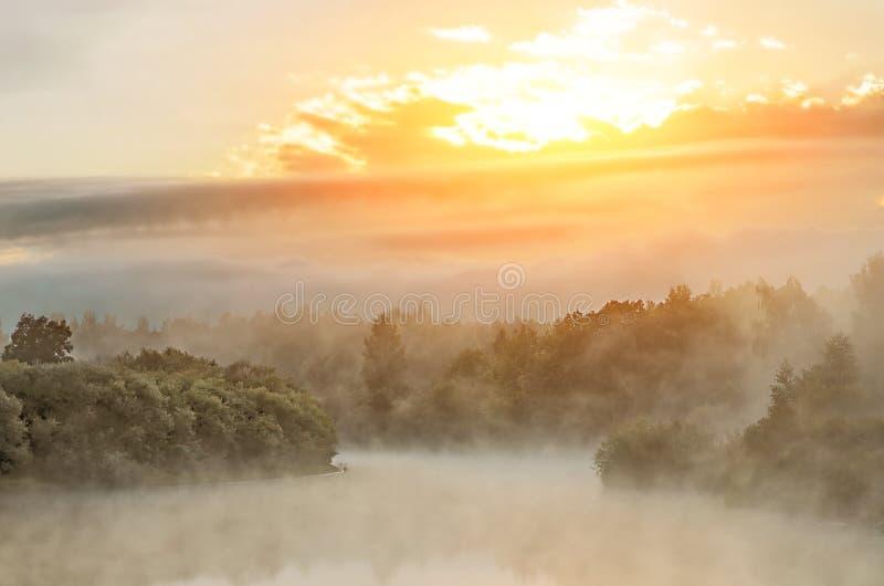 Morgen auf dem frühen Morgen des Flusses deckt Nebelnebel und Wasseroberfläche auf dem Fluss mit Schilf stockfotografie