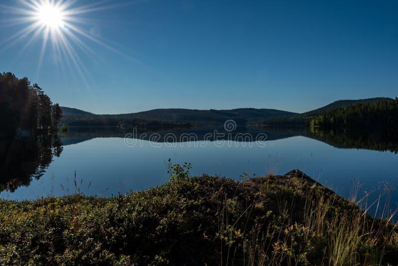 Morgen in Lappland stockfoto
