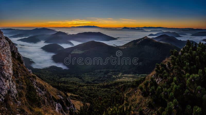 Morgen-Nebel lizenzfreies stockfoto
