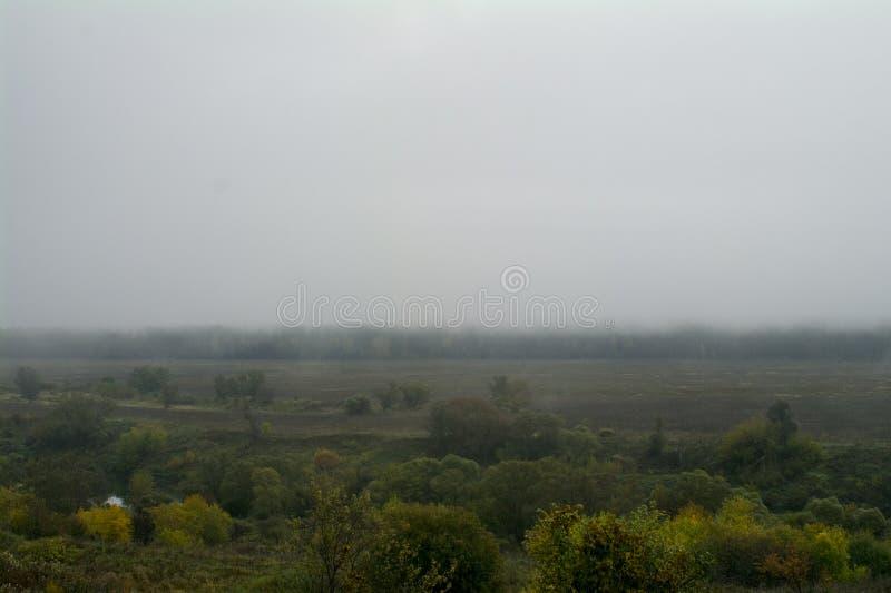 Morgen nebelhaft, der Fluss Oka lizenzfreie stockbilder