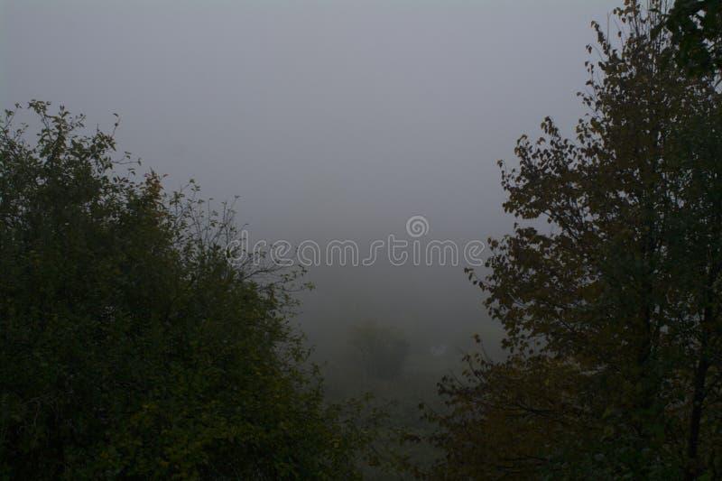 Morgen nebelhaft, der Fluss Oka lizenzfreie stockfotos