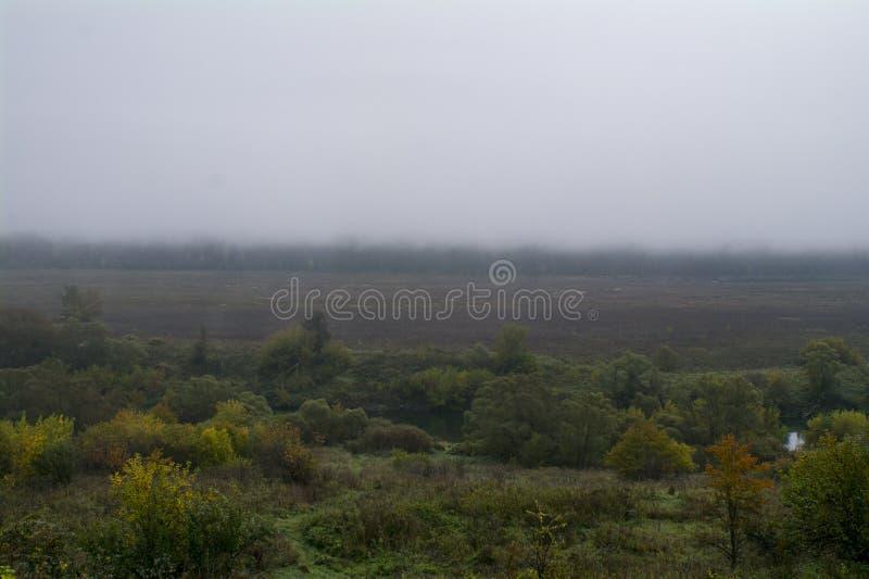 Morgen nebelhaft, der Fluss Oka lizenzfreies stockfoto