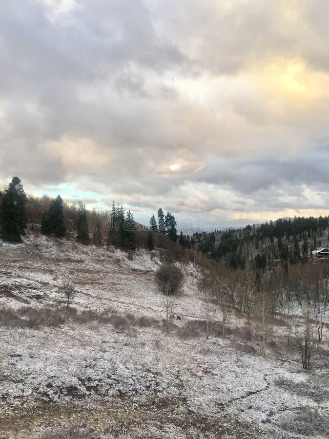 Morgen-Schnee lizenzfreie stockfotografie