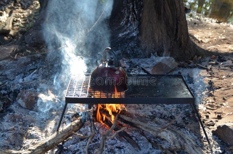 Morgen-Strahlen über einem Lager-Feuer stockfotos