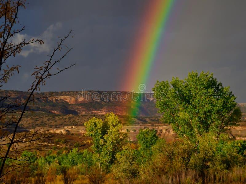 Morgen-Wüsten-Regenbogen lizenzfreie stockbilder
