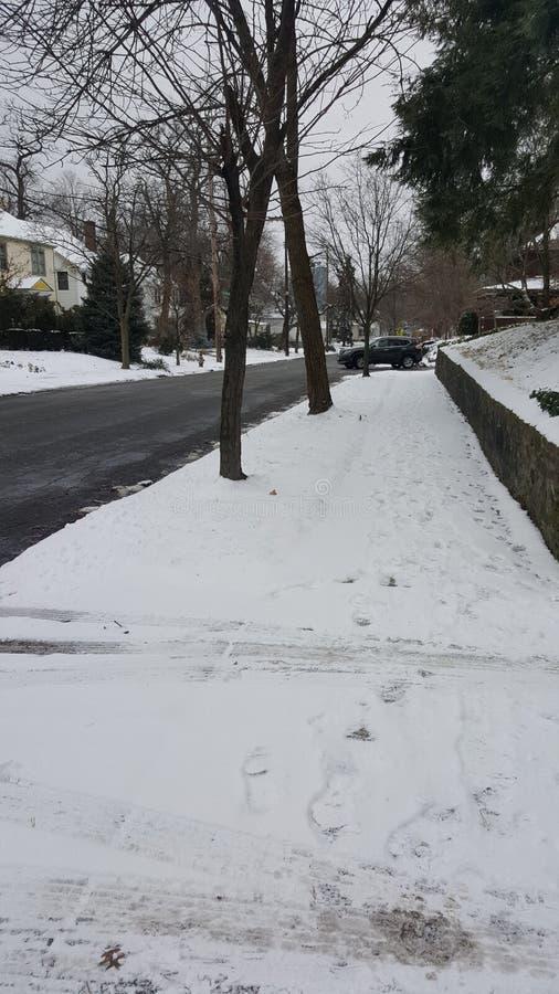 Morgen-Winterspaziergang in der schneebedeckten Nachbarschaft lizenzfreie stockfotos