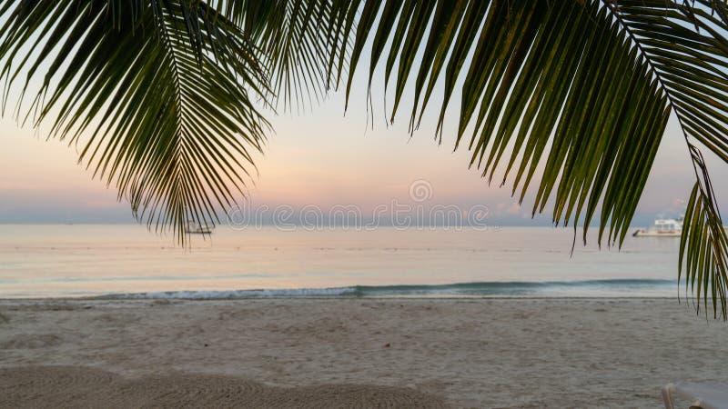 Morgenansicht des Ozeans stockfotografie
