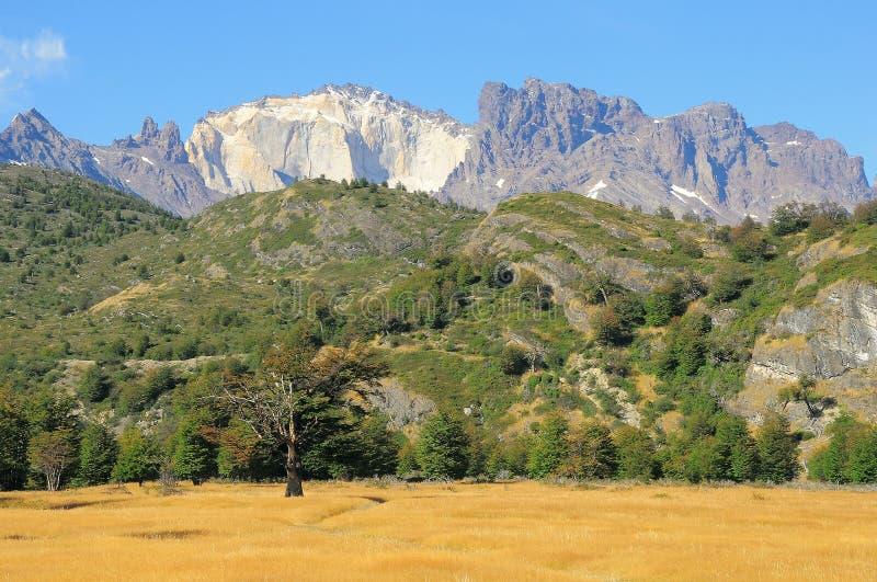 Morgenbergblick des Nationalparks Torres Del Paine stockfoto
