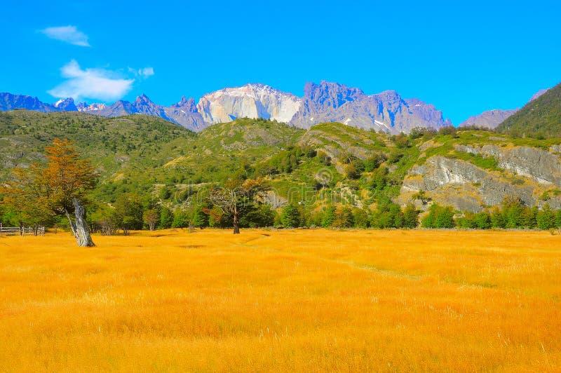 Morgenbergblick Nationalparks Torres Del Paine lizenzfreies stockbild