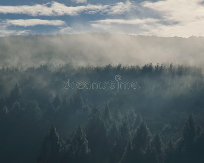 Morgenhimmel über den Waldbergen in den Wolken lizenzfreie stockbilder