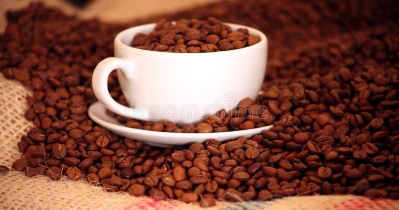 Morgenkaffee mit Bohnen lizenzfreies stockbild