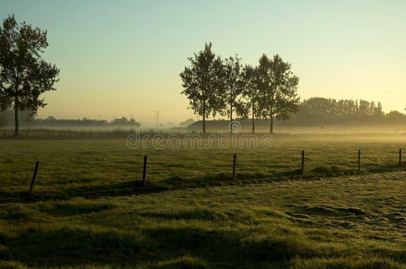 Morgenlandschaft lizenzfreies stockbild