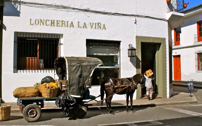 Morgenlieferung durch Pferdewagen, Popayan stockbild