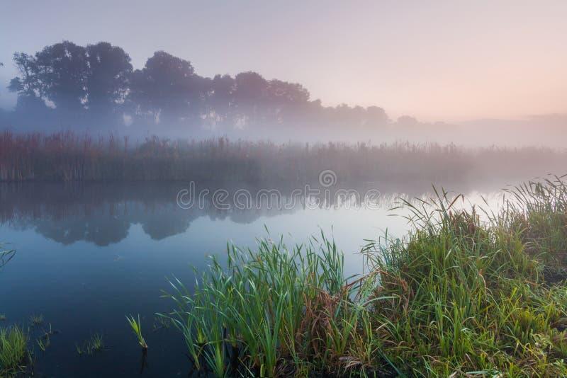 Morgennebel über einem kleinen Fluss lizenzfreie stockfotos