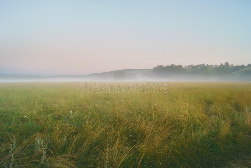 Morgennebel über Wiesen und Feldern nahe den Hügeln lizenzfreie stockfotos
