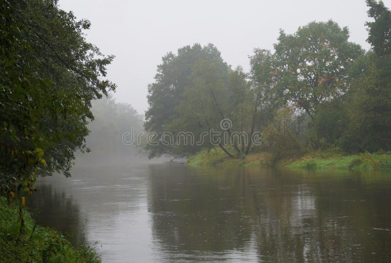 Morgennebel decken langsam den langsam flüssigen Fluss auf lizenzfreie stockbilder