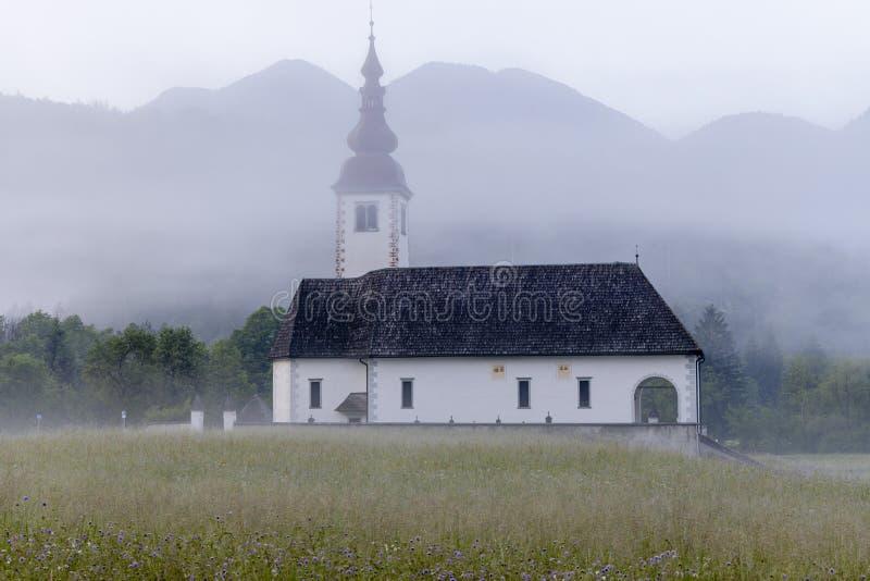 Morgennebel in River Valley Sava Bohinjka, Slowenien lizenzfreies stockfoto