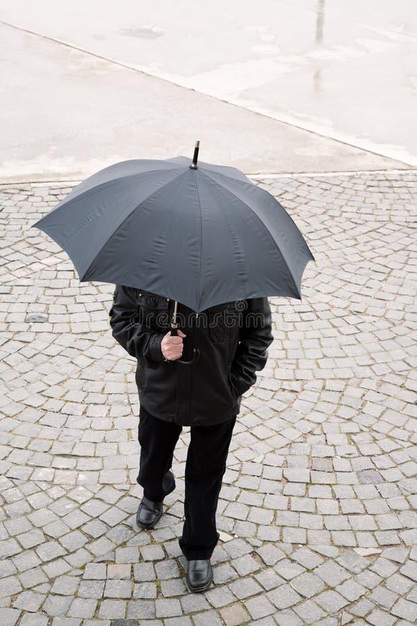 Morgenregen lizenzfreie stockfotos