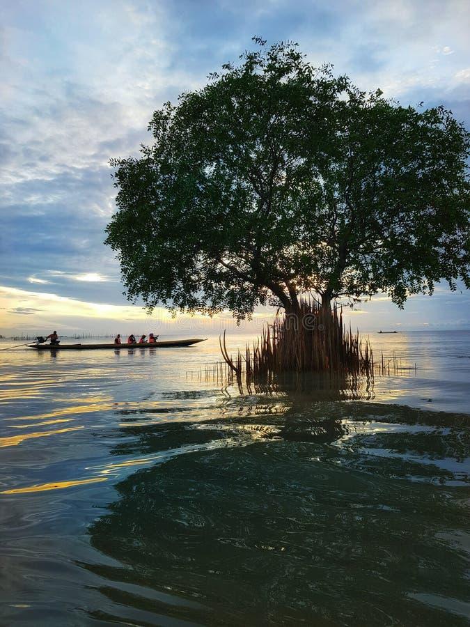 Morgenruhe auf dem See lizenzfreies stockbild