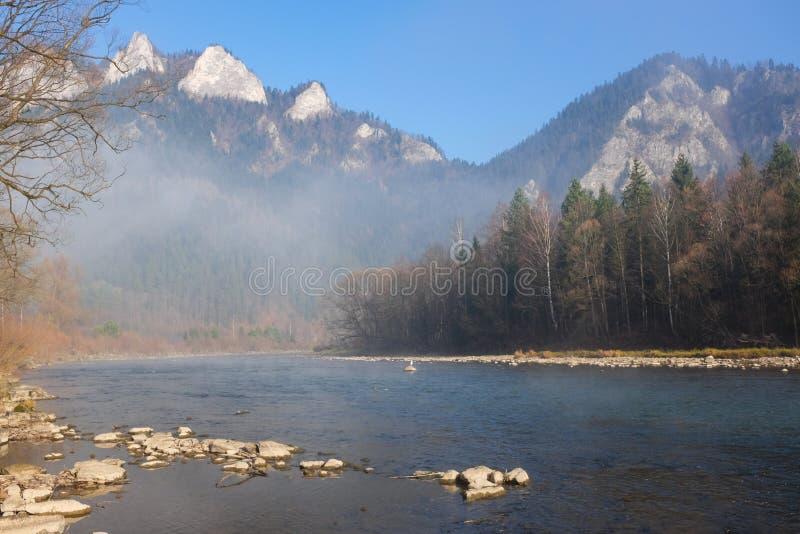 Morgensonne und -nebel, die über einem Gebirgs- und dunajecfluß Pieniny schweben lizenzfreies stockfoto