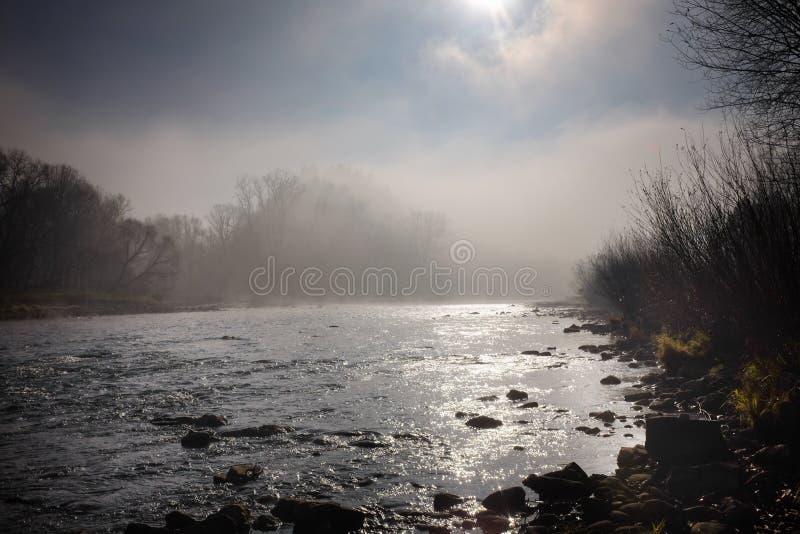 Morgensonne und -nebel, die über einem Gebirgsfluss schweben lizenzfreie stockfotografie