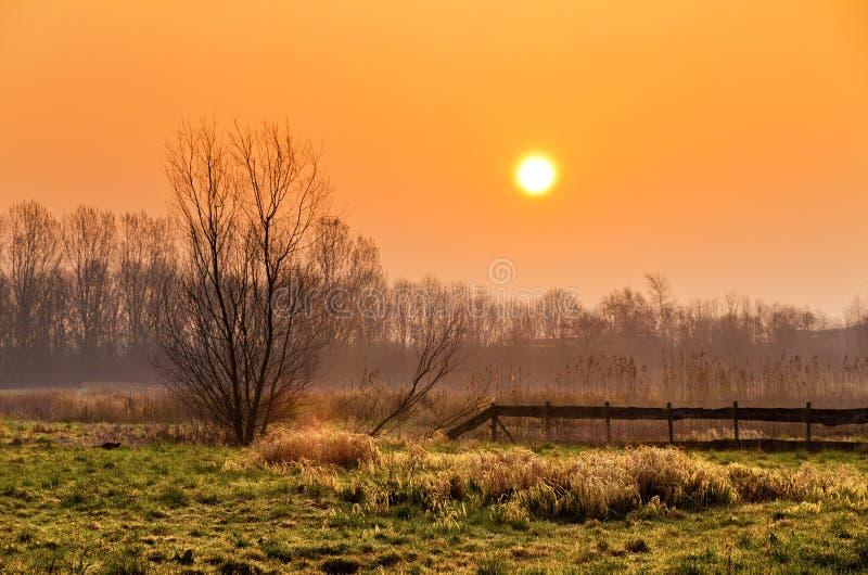 Download Morgensonnenaufganglandschaft Stockfoto - Bild von tageslicht, himmel: 26371424