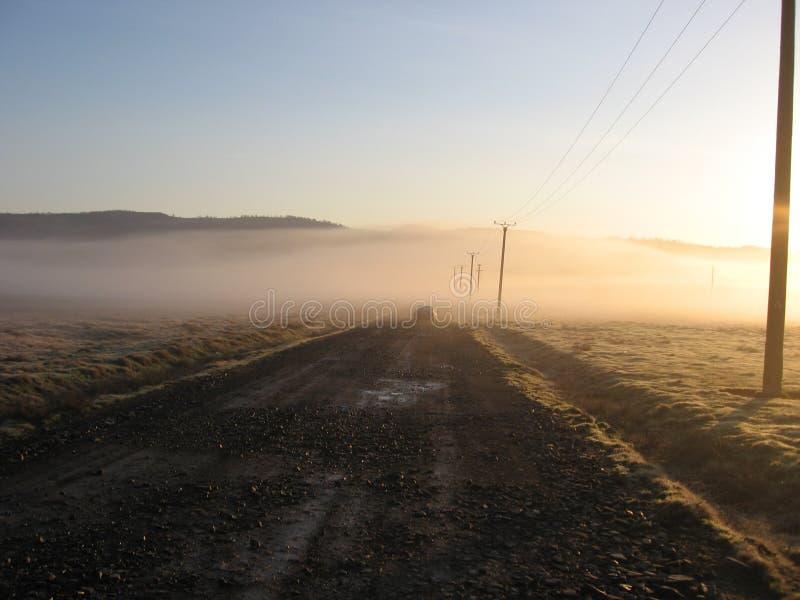 morgon arkivbilder