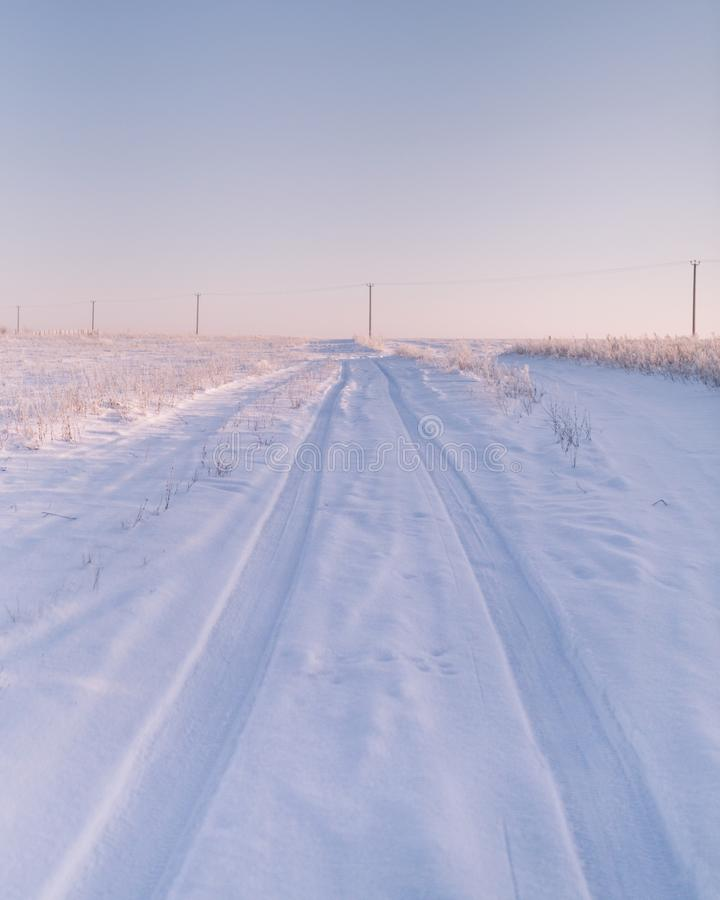 Morgon i ettfyllt fält arkivfoto