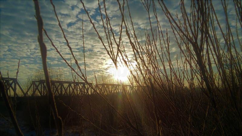 Morgon i vintern royaltyfria foton