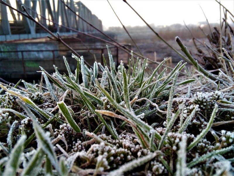 Morgon i vintern arkivfoton