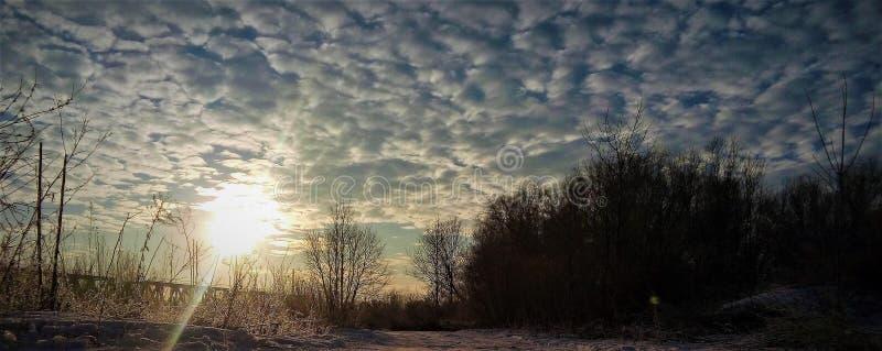 Morgon i vintern arkivbilder