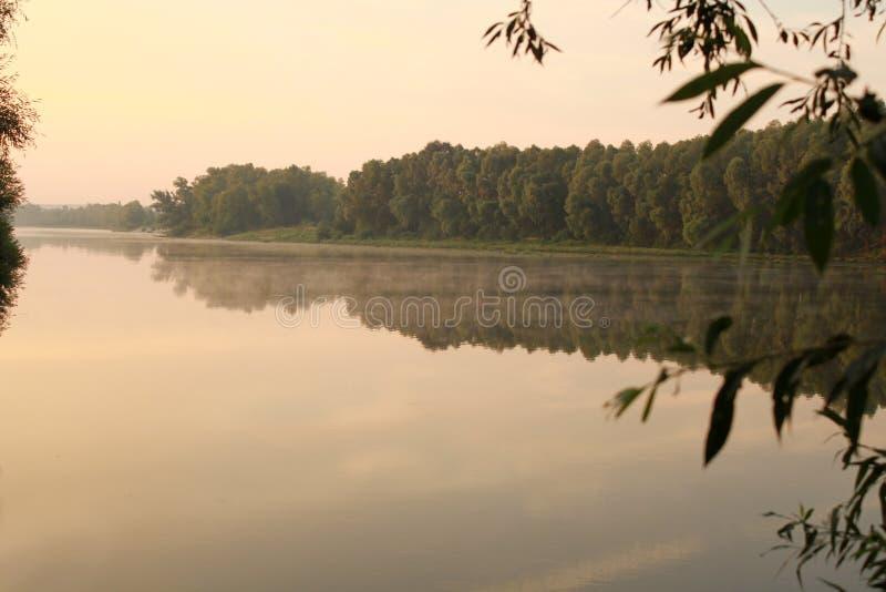 Morgon på floden Dimma och avdunstning över vatten arkivfoton