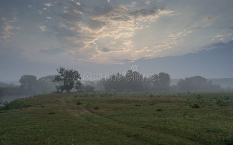 Morgon på floden nära den Rogachev staden royaltyfri fotografi