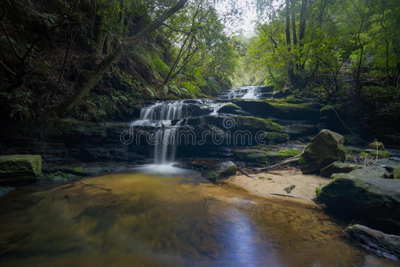 Morgon på Leura kaskader, blå bergnationalpark royaltyfri foto