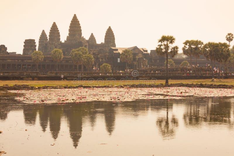 Morgon p? Ankor Wat, Siem Reap, Cambodja royaltyfri foto