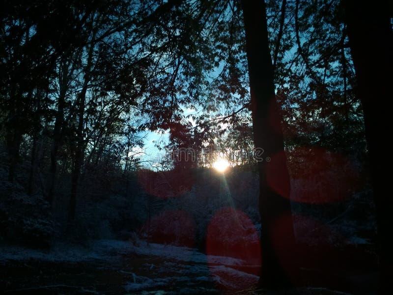 Morgon Sun arkivfoto