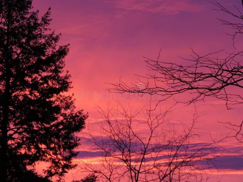 Morgon Sunrise i Kanada fotografering för bildbyråer