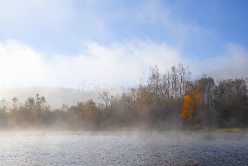 Morgondimma över floden, natur av Carpathians, nedgång royaltyfria foton
