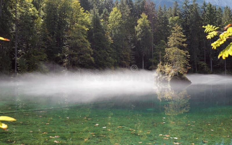 Morgondimma på en alpina sjö royaltyfria bilder
