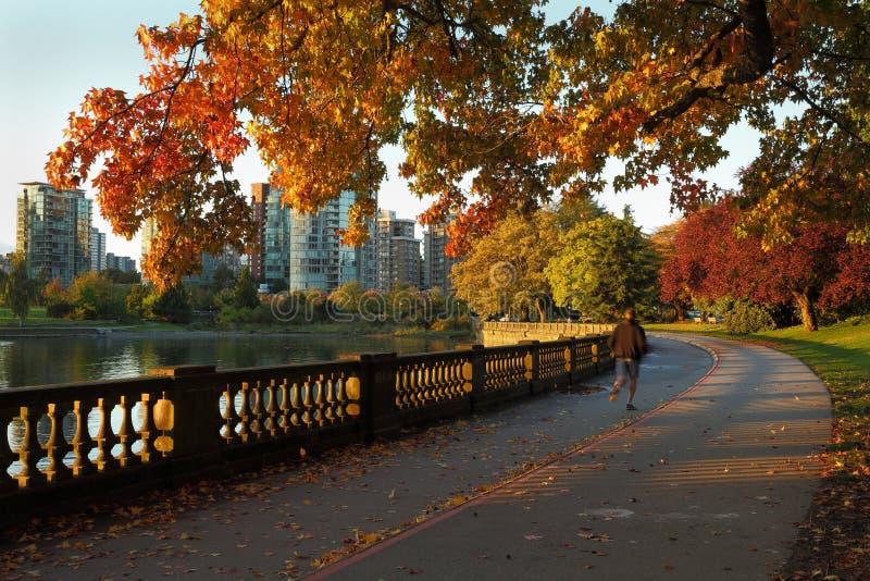 Morgonen joggar, Stanley Park, Vancouver royaltyfri fotografi