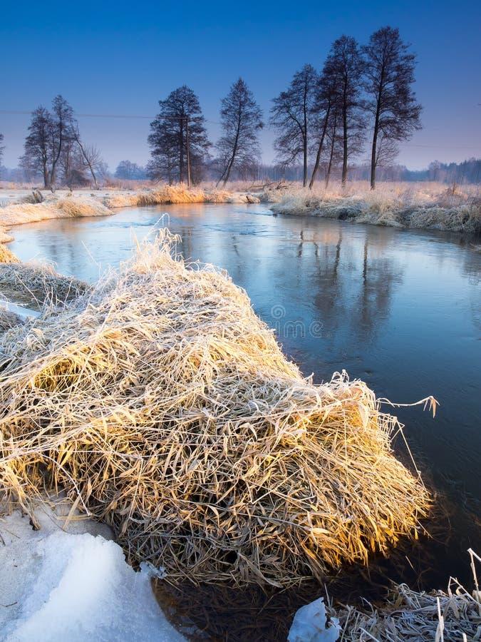 Morgonflod arkivfoto