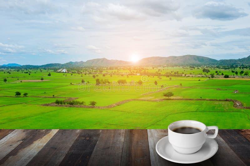 Morgonkaffe, berget, ris brukar och soluppgång fotografering för bildbyråer