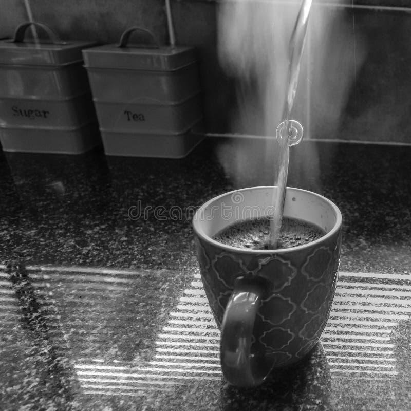 Morgonkaffe i solljuset royaltyfri fotografi