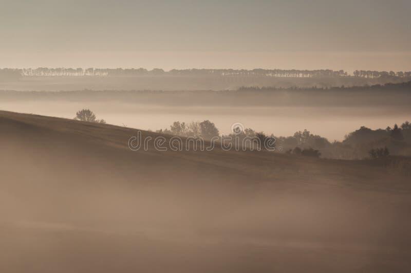 Morgonlandskap i sommar arkivfoto