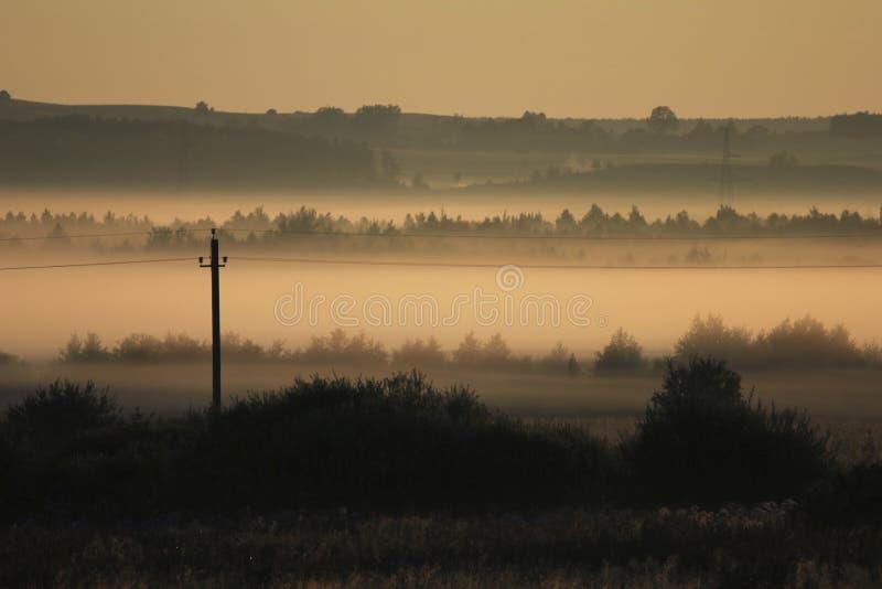 Morgonlandskap i tjock dimma för sommar royaltyfri foto
